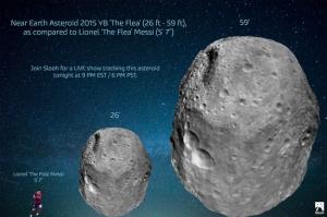 nasa-asteroid-2015yb-the-flea (1)